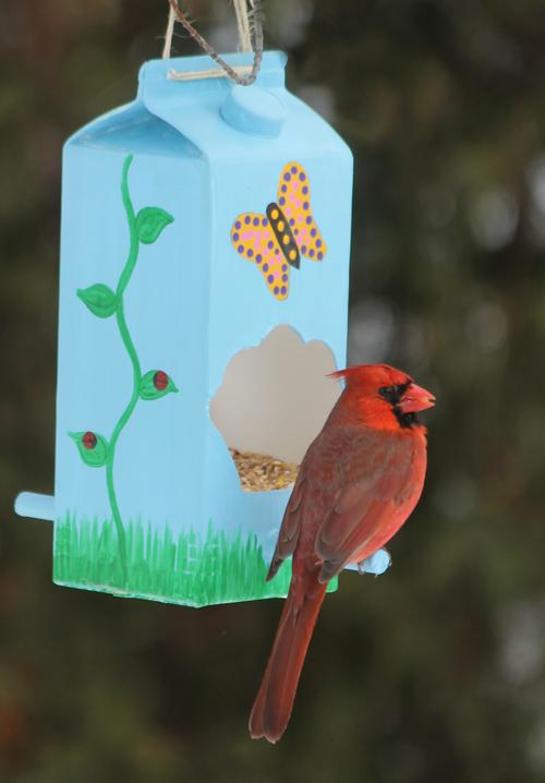 Bird feeeder