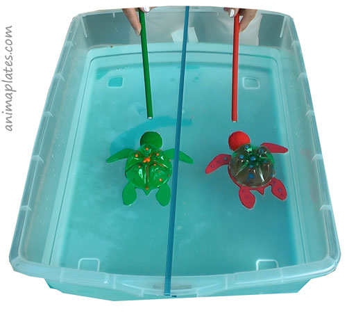 Turtle race with magnets