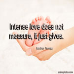 Love does not measure