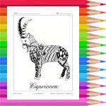Zodiac: Capricorn