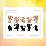 Monkeys and their shadows