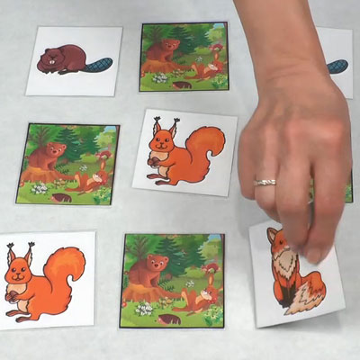 Forest Animals Game